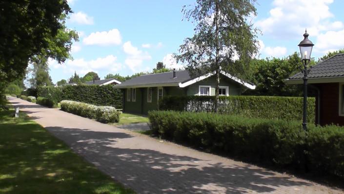 Onnen - Gert van Ramshorst